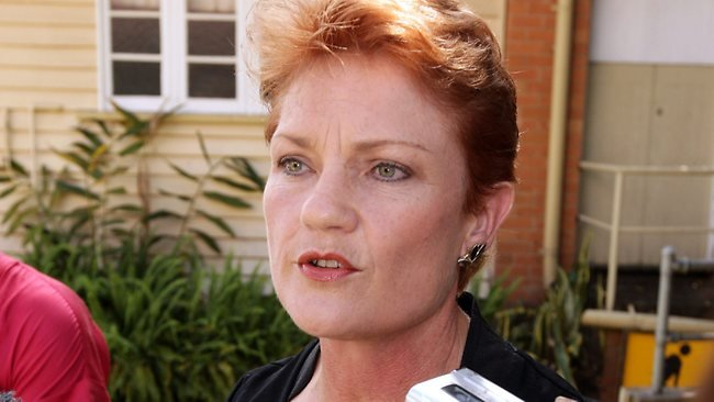 The Masked Lib: Pauline Hanson and the comeback the Left enabled