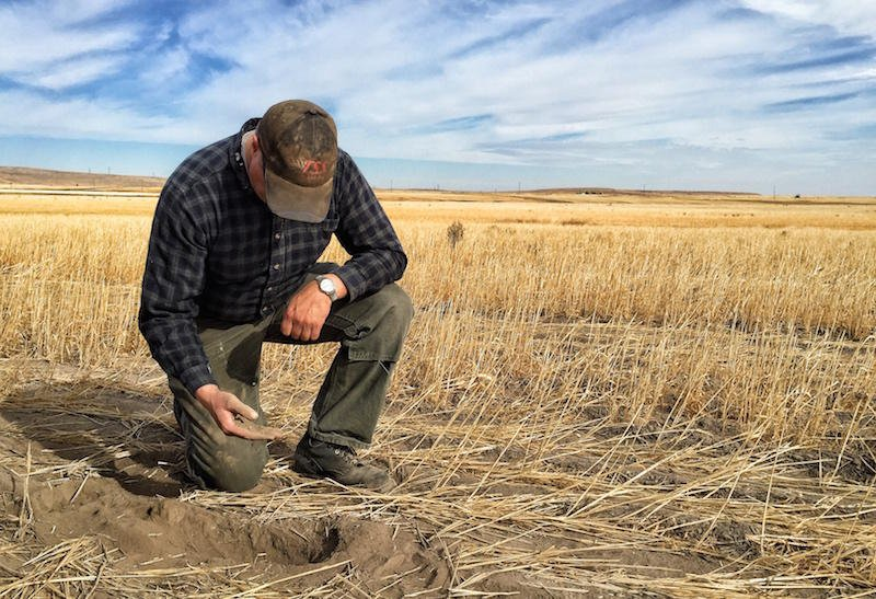 Does drought relief actually help our farmers?