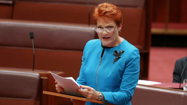 Raising the age to vote? Why stop there, Pauline?
