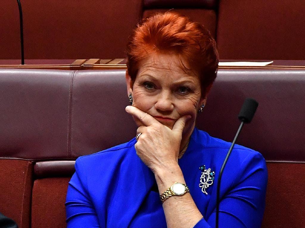 Grassgate: Pauline saves Angus by squashing beef
