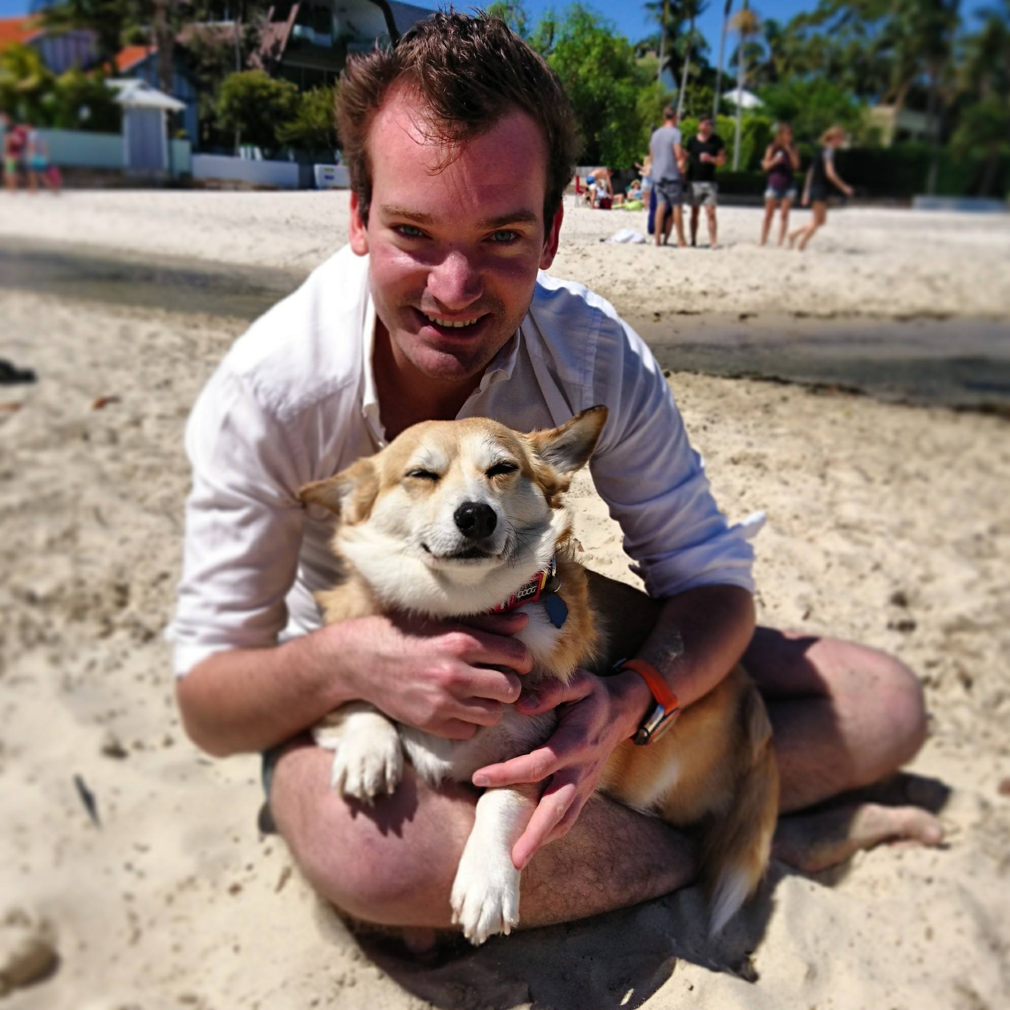 Dr Sam Kovac: Spending an Australia Day to remember for Sydney's dogs