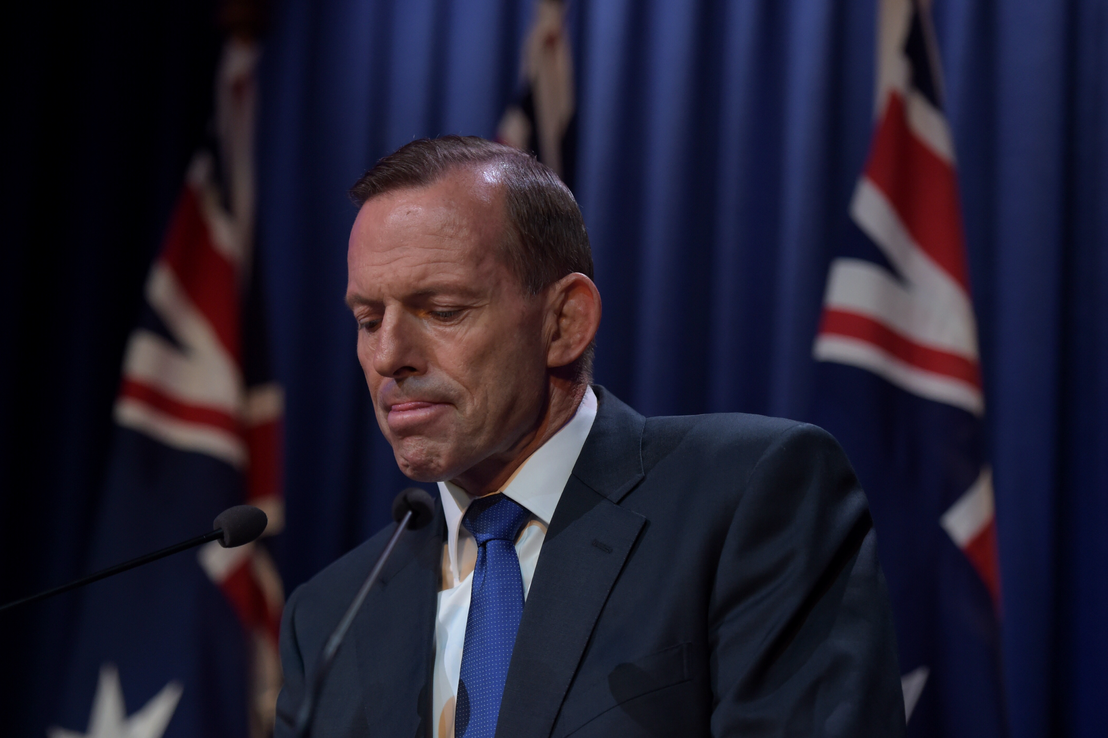 Abbott whistling up a storm