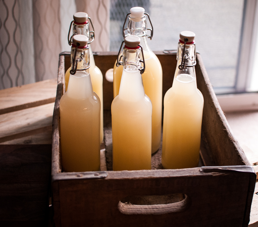 Home Grown Country Life: DIY Ginger Beer