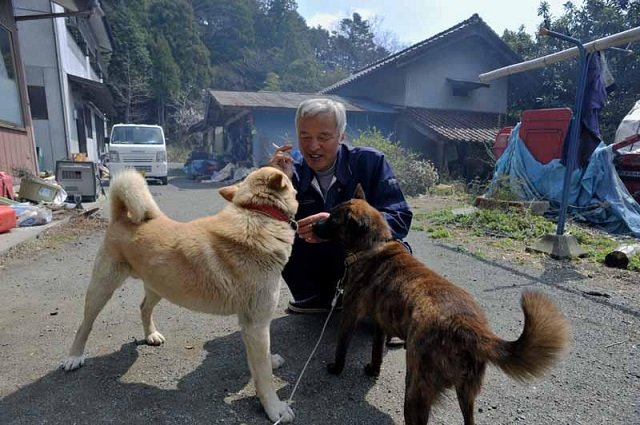 Meet the pair looking after pets in the Fukushima exclusion zone