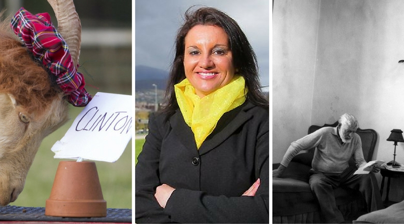While you were asleep: Goat picks Clinton, Lambie saves SSM, Netflix for books