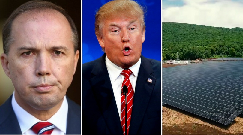 While you were asleep: #SackDutton movement, Trump's sweet vid and the solar-powered island