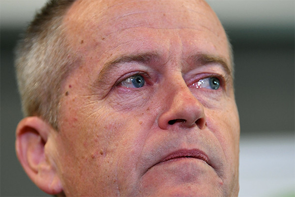 Labor may blame Shorten, but Albanese is far worse