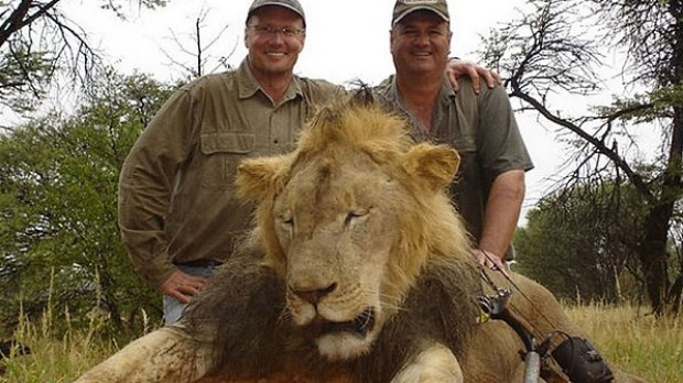 Cecil the Lion: A hunter's scope