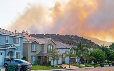 At $100 billion, the fires are Australia's costliest natural disaster
