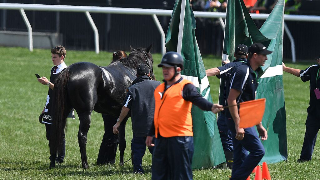 The day after the Melbourne Cup: Are we still angry? I think not.