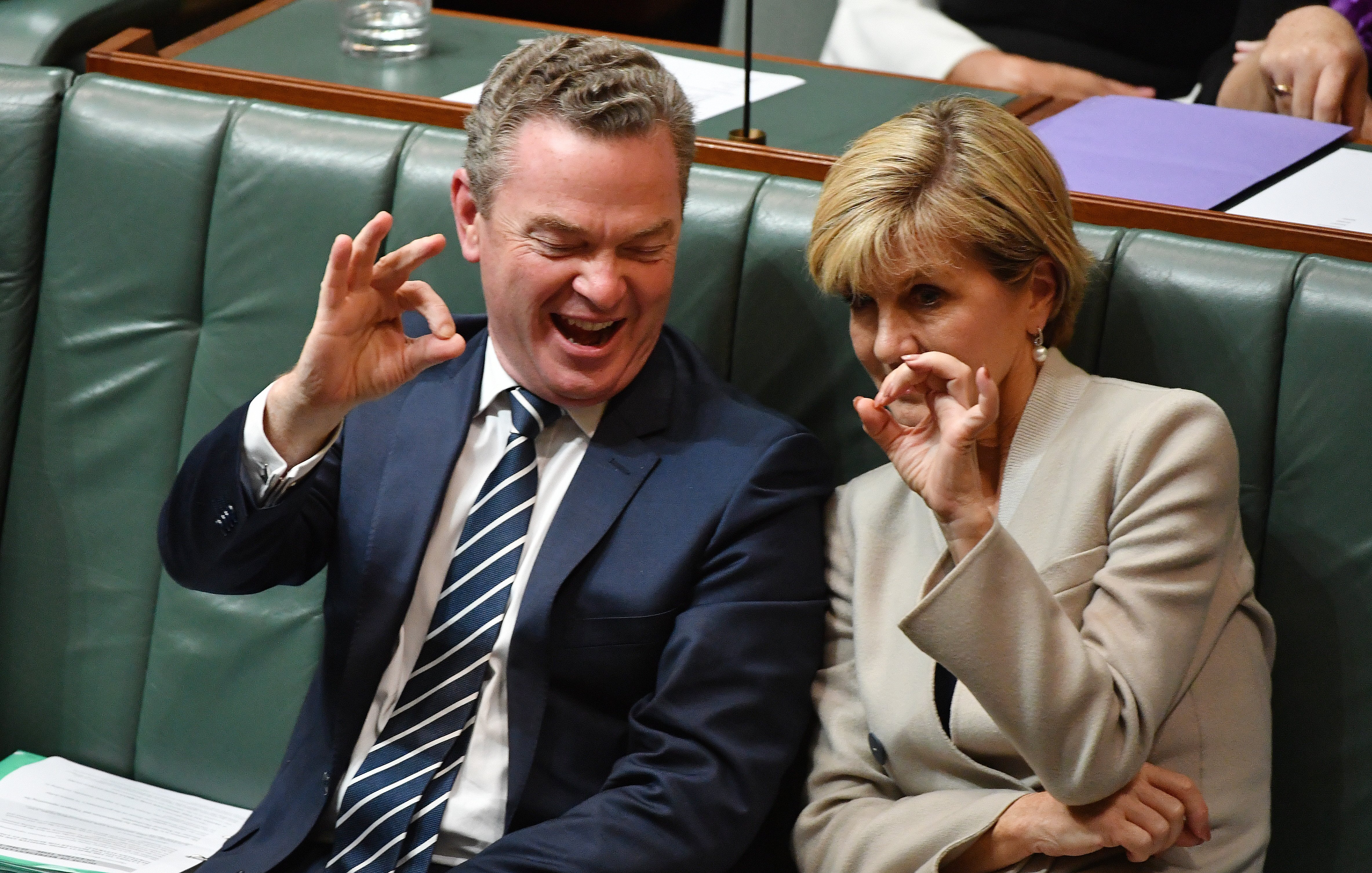 Pyne and Bishop don't pass the pub test, but they will pass the Senate inquiry